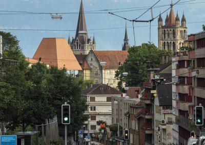 El nuevo Parlamento, el Castillo y la Catedral y al fondo los Alpes