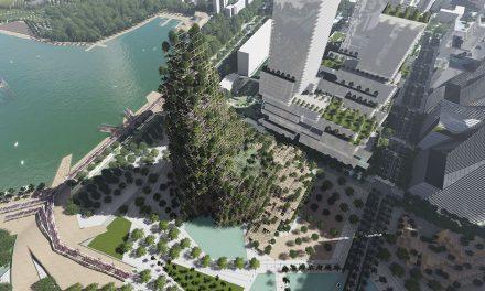 Hacia una ciudad ecológica, densa y compacta