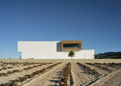 El proyecto se integra en el singular Paraje de La Raja, bañado por un mar de viñedos