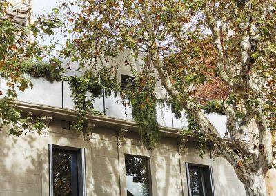"""Al convertir la azotea en un espacio vivo y """"verde"""" se mejora la calidad de vida y a la vez un mejor comportamiento ambiental del edificio"""