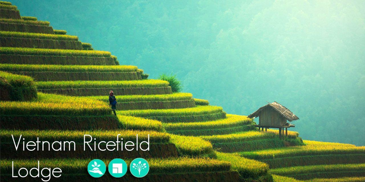 Lanzamiento del concurso internacional Vietnam Ricefield Lodge