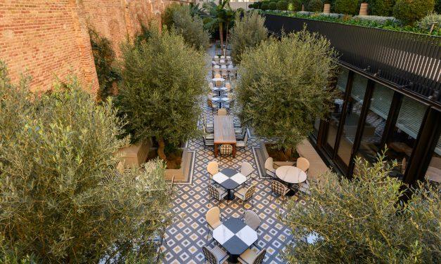 The Patio: arquitectura, interiorismo y naturaleza en el centro urbano de Barcelona